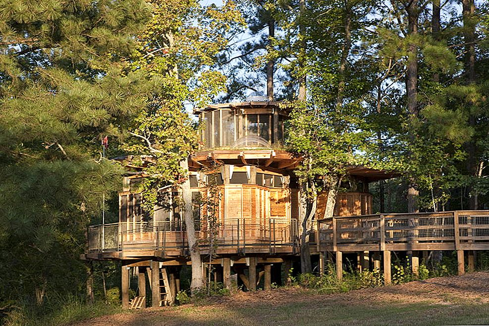 Camp Twin Lakes Treehouse av Lord, Aeck & Sargent