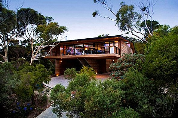 Contemporary Adult's Tree House: Citriodora Residence Austraalias