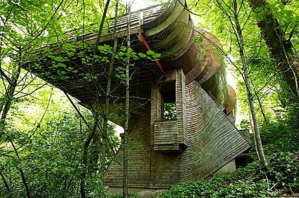 Wilkinson Residence Portland, Oregon - The Tree House