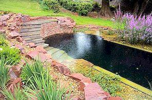 Mėgaukitės savo sodu šią vasarą: natūralios baseinų idėjos