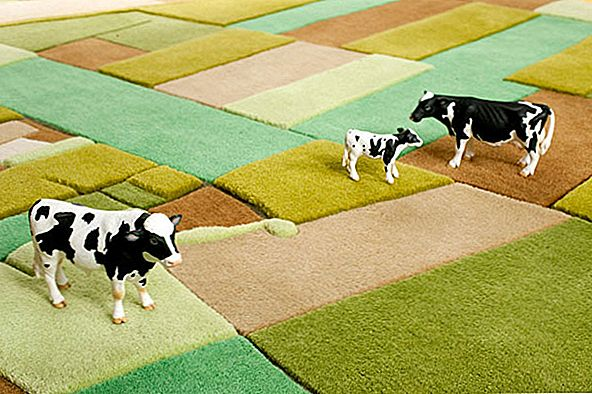 Fluffy and Colorful Landcarpets for Interiors with a Perspective