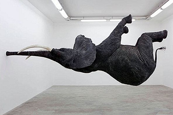 Levande Elephant Installation Balancing On Its Trunk