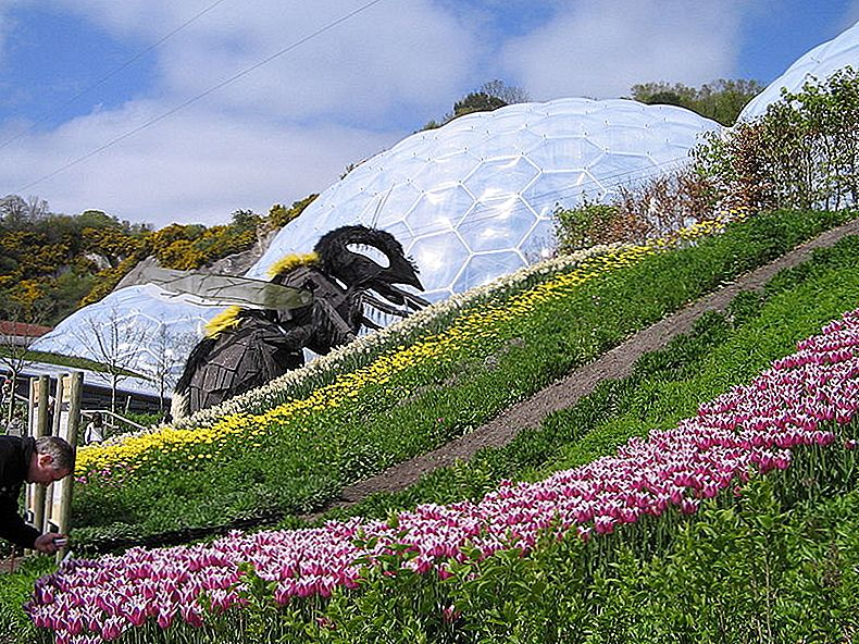 Eden Project w Cornwall, UK