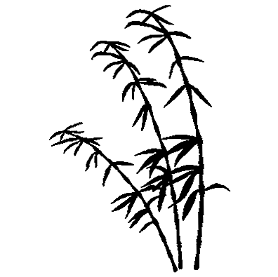 Wallissimo Bamboo Silhouette