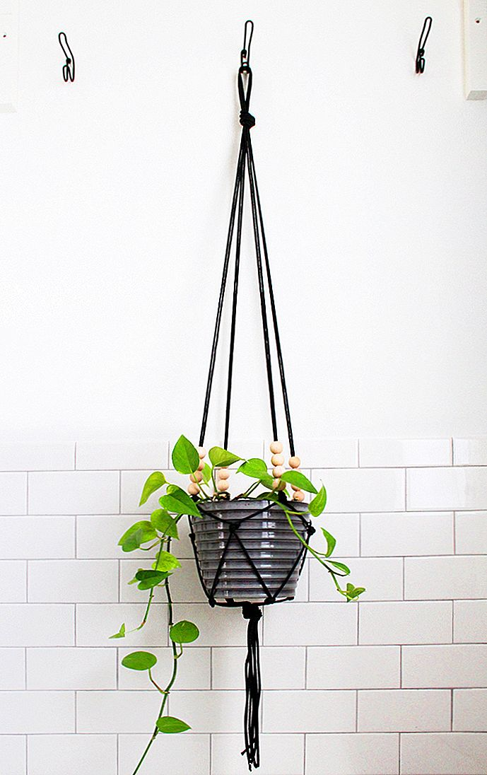 DIY Macrame Plant Hangers To Craft In Your Wolny czas