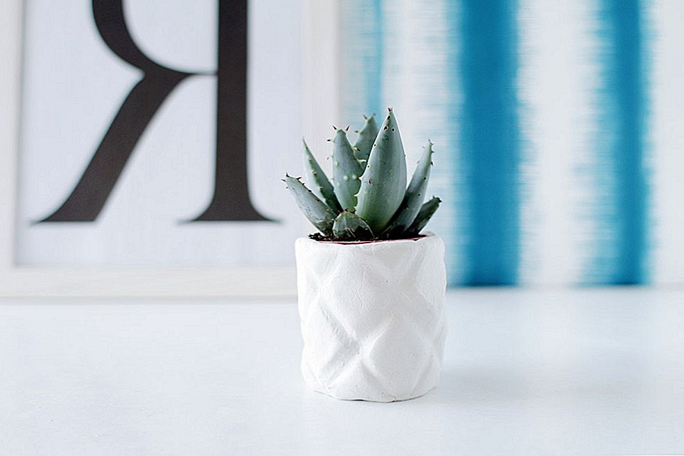 DIY Ananassi Planter