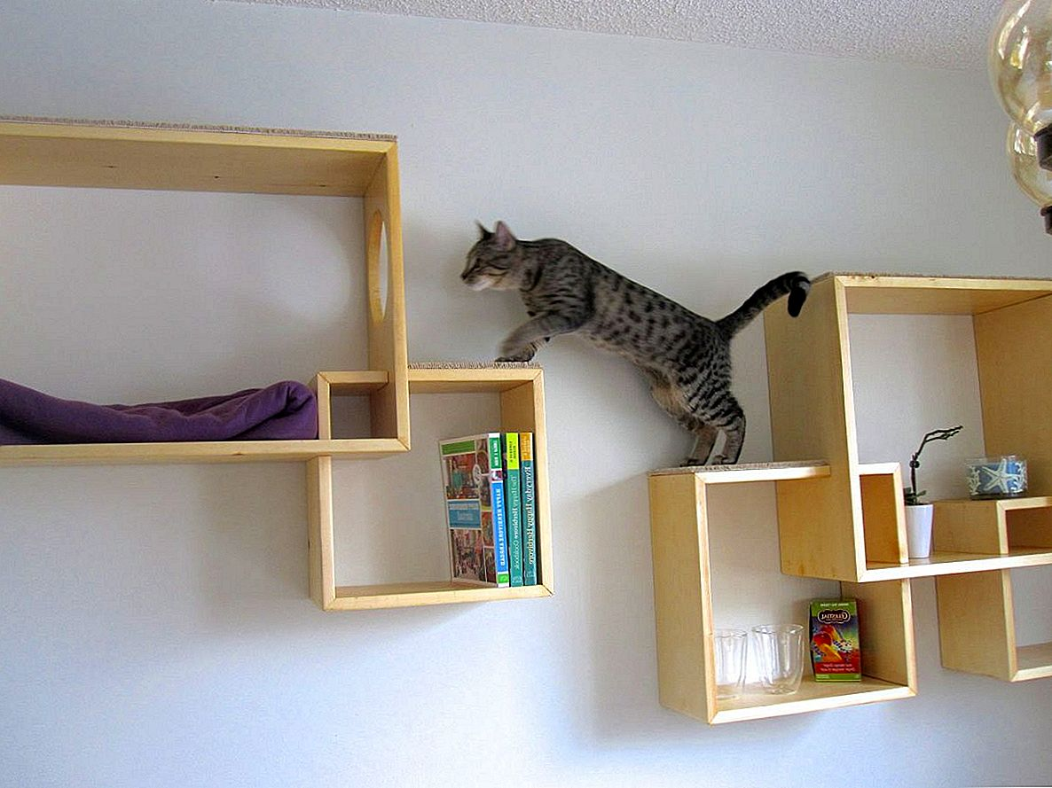 Moderne Cat Tree Alternativer For Up-To-Date Pets