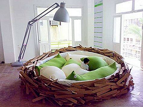 Intressant Bird Nest Giant Bed